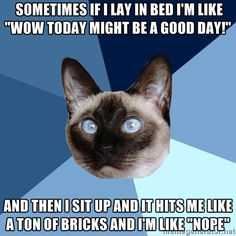 """Sometimes, if I lay in bed I'm like: """"Wow, today might be a good day! And then I sit up and it hits me like a ton of bricks, and I'm like: """"Nope."""" melody-werth1.jpg"""