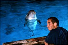"The adorable JMB and the Dolphin (again!),  in ""The Big Blue"" <3"