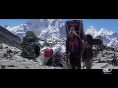 Sherpa Trailer - YouTube