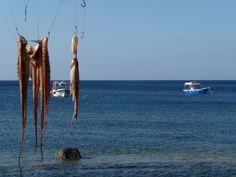 Octopus, Akrotiri, Santorini Santorini Honeymoon, Santorini Island, Santorini Greece, Akrotiri Santorini, Greek Islands, Octopus, Places Ive Been, Outdoor Decor, Style