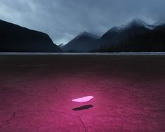 The kitsch destruction of our world -  Benoit Paillé
