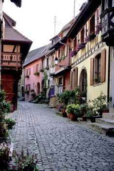 ASCP Scandinavian Pink or Antoinette and Arles inspiration fg.   Alsace, France