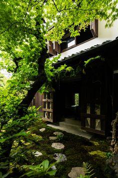 New Kazama Townhouse - Japanese Garden Design Japanese Garden Design, Japanese House, Japanese Gardens, Botanical Gardens Near Me, Egyptian Home Decor, Japanese Architecture, Pavilion Architecture, Sustainable Architecture, Residential Architecture