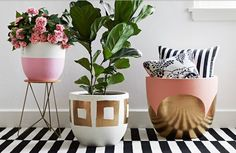 Cute indoor*outdoor planters