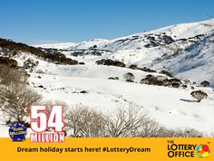 Where would you go if you won €54M? #LotteryDreamHoliday #lotto #lottery #LotteryOffice