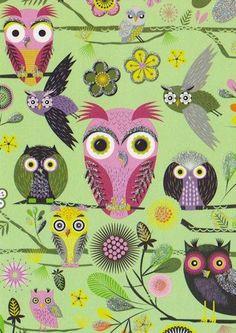 OWLS OWLS & MORE OWLS