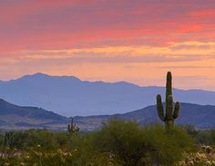 Yuma, AZ has the most beautiful sunsets I've ever seen.