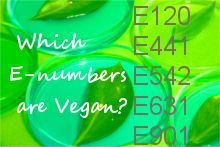 This easy-to-load list helps you identify vegan E-numbers while you shop.
