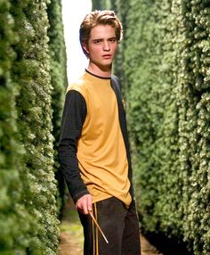Robert Pattinson, Harry Potter and the Goblet of Fire The Twilight hunk first captured moviegoers' attention in 2005 thanks to his part in another major film franchise: Harry Potter. (Pattinson played Cedric Diggory.)