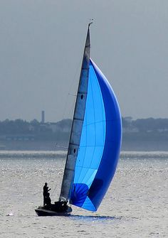 A touch of Blue by Keith Allso, via Flickr
