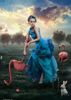 The Look: Wonderland