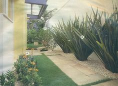 Ideias para decorar jardim
