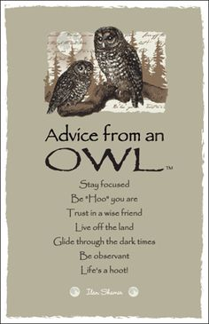 Advice from an Owl