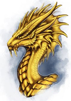 Gold Wyvern by Adalfyre on DeviantArt