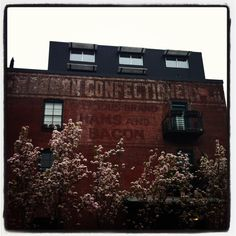 Loft building in the Pearl district in Portland, Oregon with a ghost sign about ham & bacon