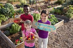 Community#gardenshelp increase access to healthy foods and opportunities for physical activity. Try a raised bed or row edible garden. Look for ways to get involved in your #community! http://livewell.aces.edu/gardens/