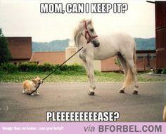 I Got A Pony!