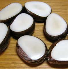 Four Natural White Tagua Nut Beads 12mm Thick by EcoBeadsTagua, $8.25