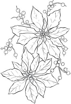 See 4 Best Images of Printable Line Art. Inspiring Printable Line Art printable images. Christmas Poinsettia Line Art Abstract Doodle Art Coloring Pages Adult Grimm Fairy Tales Coloring Pages Van Gogh Starry Night Coloring Free Christmas Image Poinsettia Flower, Christmas Poinsettia, Christmas Colors, Christmas Flowers, Graphics Fairy, Christmas Coloring Pages, Coloring Book Pages, Flower Coloring Pages, Mandala Coloring