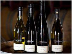 Nothing found for Vineyards Newport Vineyards Newport Vineyards, Rhode Island, Wines, Ocean, Places, The Ocean, Sea, Lugares