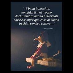 E bada Pinocchio, non fidarti mai troppo di chi sembra buono e ricordati che c'è sempre qualcosa di buono in chi ti sembra cattivo.