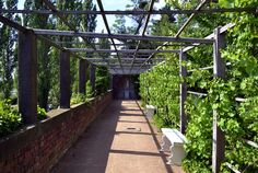 Pergola und Betender Knabe im Wörlitzer Park