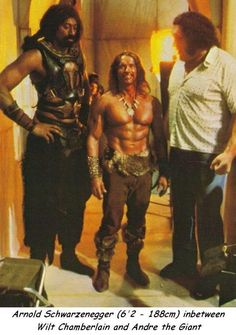 Wilt Chamberlain, Arnold Schwarzenegger, and André the Giant on the set of Conan the Destroyer He looks so little! Arnold Schwarzenegger, Conan Der Zerstörer, Conan Der Barbar, Conan The Destroyer, Wilt Chamberlain, Cinema Tv, Andre The Giant, Funny Videos, Celebrity Photos