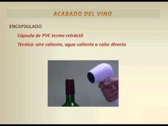 Video 5 - Curso Elaboración Artesanal de Vino de Frutas