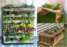 If you have old, used pallets lying around, you're probably planning to dispose of them eventually or have thought about what you can do with them. One of the best ways to put your pallets to work is by giving…