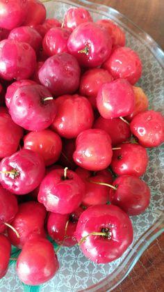 Acerola Cherry, Fruit, Food, Essen, Meals, Prunus, Yemek, Eten
