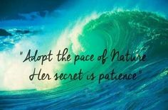 """Adopt the pace of nature.  Her secret is patience."" ~ Ralph Waldo Emerson.  (Discovery Images (@discoveryimages) 