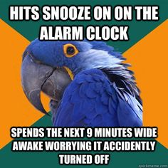 Paranoid Parrot - hits snooze on on the alarm clock spends the next 9 minutes