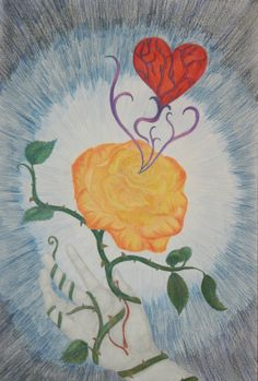 Color pencil and graphite thorny rose