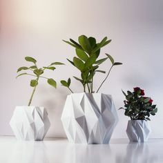 Polygon Plant Pot, 3D Printed Geometric Pots Modern Art, Plastic Indoor Planter…