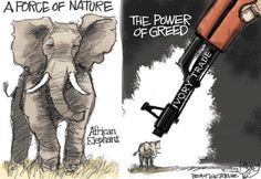 This Pat Bagley cartoon appears in The Salt Lake Tribune on Friday, Sept. Ivory Trade, Cartoon Elephant, Gentle Giant, African Elephant, Animal Welfare, Animal Rescue, Beast, Rhinos, Memes