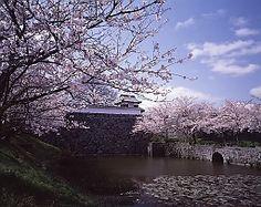 [FUKUOKA CASTLE]  The Fukuoka castle is also called Maizuru castle.   Although magnificence is not a castle, it is called famous castle.    #japan#fukuoka