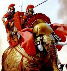 Carthago, War Elephant, Punic Wars, Ancient Persia, Armies, Military History, Ancient Greek, Story Time, Warfare