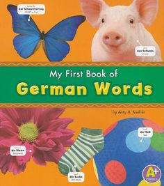 My First Book of German Words (Bilingual Picture Dictionaries) (Multilingual Edition) by Katy R. Kudela, http://smile.amazon.com/dp/1429663359/ref=cm_sw_r_pi_dp_VPAcub0RC1VQY