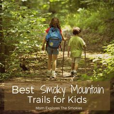 15 Best Smoky Mountain Trails for Kids and Families, Mom Explores The Smokies Smoky Mountain Trails, Smoky Mountains Hiking, Smoky Mountain National Park, Mountain Hiking, Nc Mountains, Hiking With Kids, Travel With Kids, Laurel Falls, Mountain Vacations
