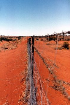 The Dingo Fence, aka the dog fence, between New South Wales and South Australia is the longest fence in the world at kilometres mi) long. Adelaide South Australia, Western Australia, Australia Travel, Australia Beach, Queensland Australia, South Wales, Tasmania, Beach Hotels, Beach Resorts