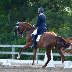 Best training advice ever and probably best life advice, too - Chronicle of the Horse
