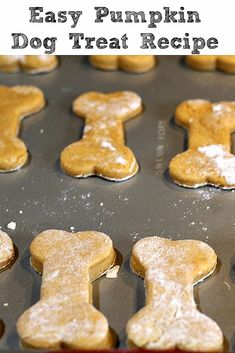 This easy Pumpkin Dog Treat Recipe is perfect to make for your dog! With only fo… This easy Pumpkin Dog Treat Recipe is perfect to make for your dog! With only four ingredients they are also super quick to whip up a batch. Dog Cookie Recipes, Homemade Dog Cookies, Dog Biscuit Recipes, Homemade Dog Food, Dog Food Recipes, Cookies For Dogs, Homemade Biscuits, Dog Biscuit Recipe Easy, Doggie Cookies Recipe