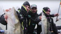 Une pêche du sandre l'hiver en compagnie de nombreux pros. Explications des techniques, du sondeur, les profondeurs de pêche à choisir... De belles images et des explications bien utiles.