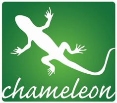 Chameleon | Area 51 Loose Ends: Interceptor Nominee: Chameleon