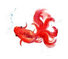 Koi Fish Watercolor Art Print, Red Watercolor Painting, Watercolor Fish Art Home Decor - 142