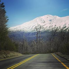 """HOLA CHILE! Salimos de Bariloche a las 8 de la mañana. Tomamos la Ruta 40 pasamos por Villa La Angostura y tomamos un cafecito en Bahia Manzano. Agarramos la ruta 231 y encaramos la frontera. Entramos a Chile por el Paso Internacional Cadernal Samoré. La ruta se transformó en la 215 del lado chileno. El paisaje es sencillamente ES PEC TA CU LAR! Tanto que paramos varias veces a comtemplarlo y pellizcarnos: ya estamos en Chile """"el viaje dentro de viaje"""" que tanto estabamos esperando…"""