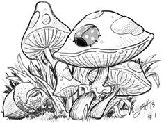 Mushrooms an acorn sketch doodle art. W/ ladybug