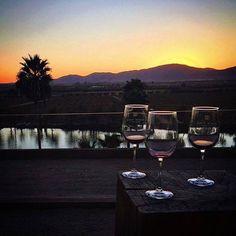 Disfrutar de un atardecer es maravilloso pero hacerlo con una copa de Vino en Monte Xanic es fabuloso! Conocelo en #Ensenada! Aventura por jgullx