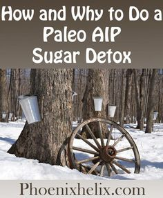 How and Why to do a Paleo AIP Sugar Detox - Phoenix Helix Week Detox Diet, Detox Diet Drinks, Detox Diet Plan, Sugar Detox Cleanse, Detox Cleanse For Weight Loss, Cleanse Diet, Stomach Cleanse, Liver Cleanse, Juice Cleanse