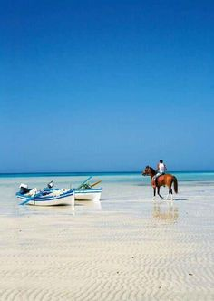 10 Dreamy Tunisia Beaches for Your Mediterranean Escape - History Fangirl Thinking about escaping to a beautiful Tunisian beach vacation? Here are the best beaches in Tunisia, from Sfax to Tunis to Bizerte! Places To Travel, Places To Visit, Villas, Reserva Natural, I Love The Beach, Belleza Natural, North Africa, Africa Travel, Beautiful Beaches